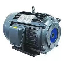 YUANDING液壓站電機1HP0.75KW圖片