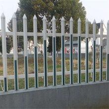 PVC栅条塑钢护栏/透视围墙栅栏/草坪绿地栅条厂家