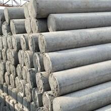 北京門頭溝10米水泥電桿公司圖片