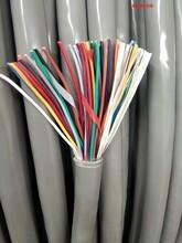 泰州礦用拉力電纜_歡迎來電圖片