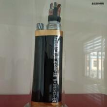 渝北礦用通信拉力電纜_優質服務圖片