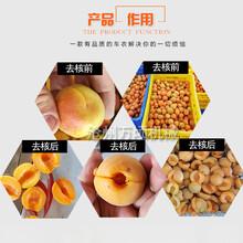 福州新型杏子去核機壽命長圖片