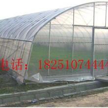 绵阳北川羌族自治县椭圆管养殖大棚哪里可以买到货到付款图片