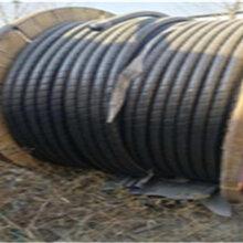 曲麻莱当地回收二手铝电缆同城可上门图片