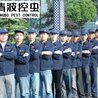 安庆清波有害生物防治有限公司(倪书乾)