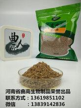腐乳紅方的培養教程教您用腐乳毛霉曲粉做腐乳圖片