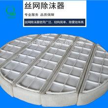 供应除沫器PP丝网除沫器汽液分离设备效率高图片