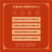 绍兴兴化大闸蟹怎么批发,台州阳澄湖大闸蟹批发代理图片