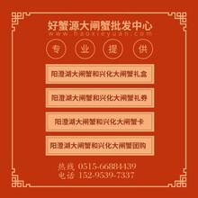 嘉兴阳澄湖大闸蟹批发代理,广东固城湖大闸蟹批发价格表图片