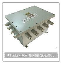 矿用光端机厂家KTG127(A)矿用隔爆型光端机图片