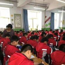 硬笔书法在线视频/中小学硬笔练字培训/小学语文同步练字帖