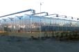 私人訂制QY-09智能溫室監控系統農業物聯網高效便捷
