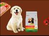 成年金毛泰迪博美拉布拉多雪納瑞小型犬中大型犬成犬幼犬通用狗糧