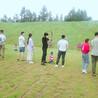 乡村旅游、同学聚会
