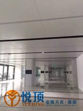南昌镂空铝单板定制生产厂家图片