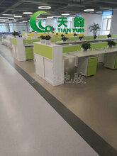 天韵沈阳大巨龙塑胶地板厂,大巨龙PVC塑胶地板,地胶厂家图片
