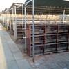 遂溪县长毛兔种兔哪里有卖
