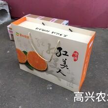 象山紅美人柑橘禮盒裝直發香港圖片