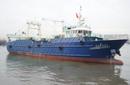 威海定制生产49米VBY806型双甲板冷冻拖网渔船图片