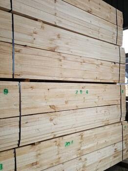 供应木方,铁杉,花旗松