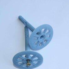 安平達德外墻塑料保溫釘外墻錨固釘分體保溫釘60大盤保溫釘圖片