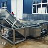 供应涡流清洗设备洗菜机果蔬清洗机韭菜气泡清洗机