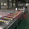 厂家供应气泡清洗机中药材清洗机食品袋清洗设备涡流清洗设备