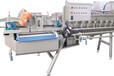 海带加工设备净菜加工设备叶菜类清洗设备根茎类清洗设备厂家热销
