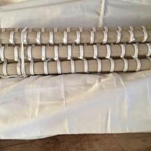 河北厂家白色琴弓马尾报价,自然白色马毛图片