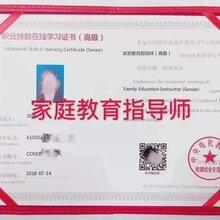 家庭教育指导师高级(专业技能在线学习证书)中央电化教育馆