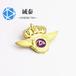 誠泰公司徽章,浙江制造金屬徽章定制瑰麗多彩