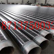 遼源直埋式保溫鋼管廠家價格今日推薦圖片