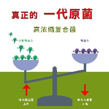 信鸽拉肚子吃什么益生菌原液效果好图片