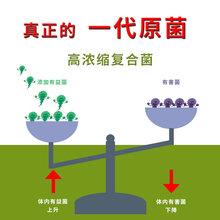 肉鸽拉稀常用的益生菌厂家在哪联系图片