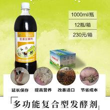 豆渣喂羊用什么发酵剂处理防拉稀效果好图片