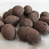 江西园林陶粒建筑回填陶粒厂家供应价格实惠