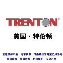 TRENTON蠟磁帶TAPE6x9,寬150mm長2.74m厚2.0mm每箱16卷價格圖片