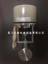 Badger.meter控制阀1/2NPT,HH500经销商图片