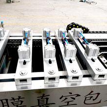 脆骨拉伸膜真空包装机全自动连续式包装机卓力盈信