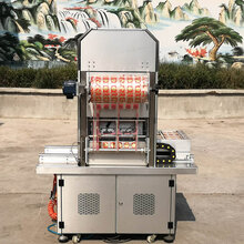糖水水果盒式真空包裝機氣調鎖鮮機