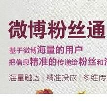 微博粉丝通广告投放电话图片