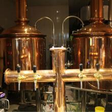 豪鲁纯精酿啤酒设备哪个好?鲜啤啤酒设备厂家终生保修图片
