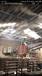 南陽高壓噴霧降塵干霧降溫加濕廠家直銷