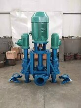 渣漿池液下抽渣泵,立式泥漿泵,沉淀池立式攪拌排漿泵圖片