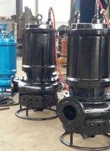 热电厂抽渣泵、吸渣泵、搅拌渣浆泵图片