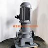 廠家直銷滑片泵不銹鋼滑片泵立式滑片泵磁力滑片泵