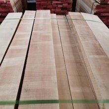 东莞中乔木业欧洲榉木直边毛边,规格料,大量供应实木板材图片