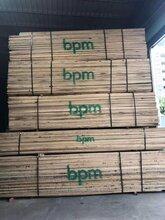 中乔木业大量供应北美原包装板材北美白橡图片