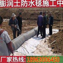 人工湖6毫米厚防水毯价格多少钱一平米