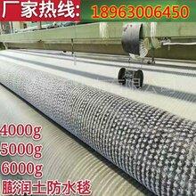 周边防水毯直销_价格优惠滁州_鱼塘防水毯山东卖_质量保证